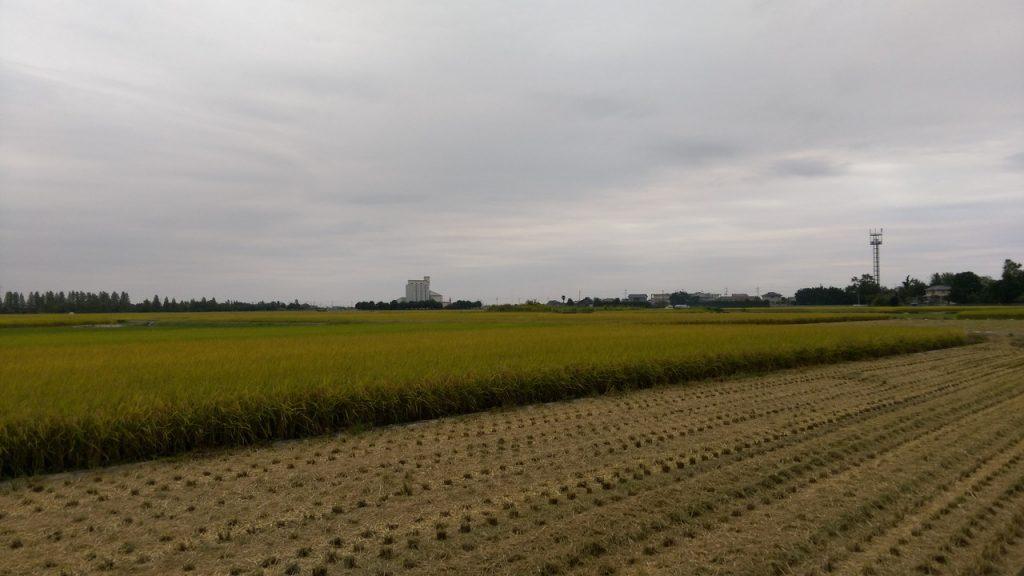 埼玉・鴻巣市付近